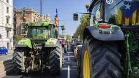 tractor-referendum-1-o