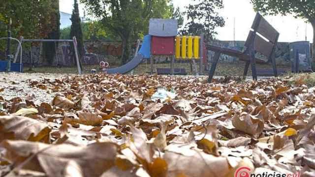 Valladolid-otono-hojas-reportaje-fotografico-6