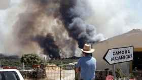 Zamora incendio pino del oro 1