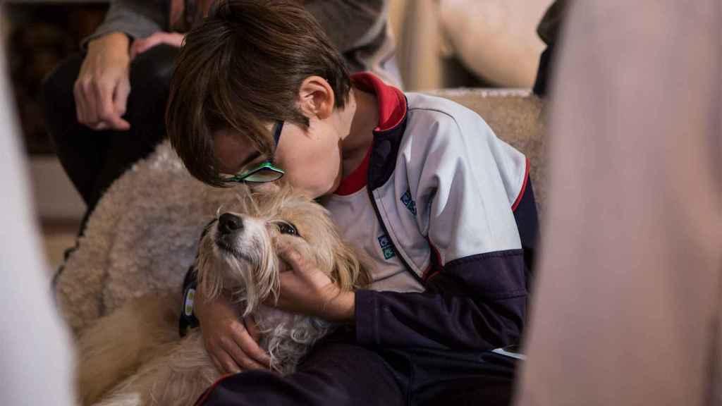 Nico besa a su fiel cómplice, Max.