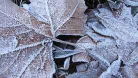 temperaturas-minimas-cyl-europapress