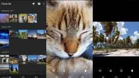 Focus Go es una nueva aplicación de galería con lo esencial