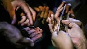 Usuarios de marihuana.