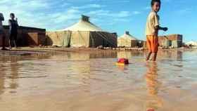 zamora sahara inundaciones
