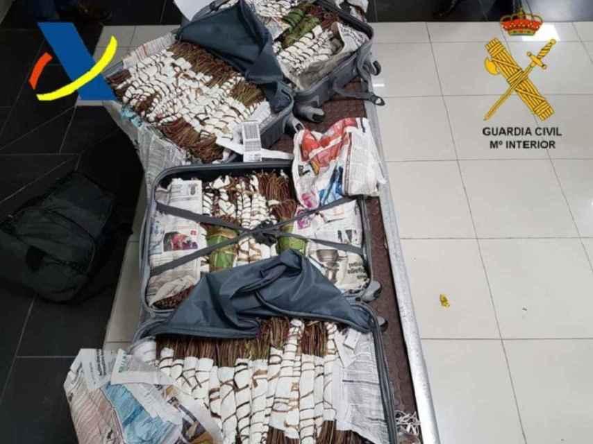 La Guardia Civil ha decomisado 30 kilos de khat en el Aeropuerto de Hondarribia