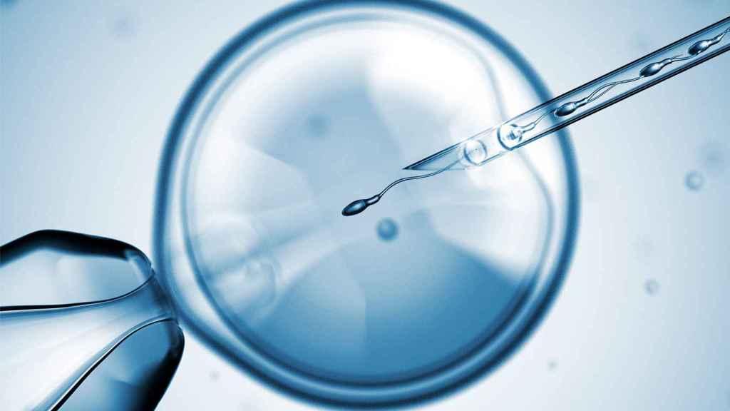 En España había 383 clínicas de reproducción asistida en 2015.