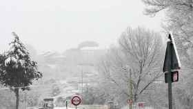 Zamora nieve sanabria 6 1