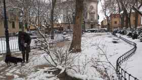 Imagen de Segovia cubierta de nieve