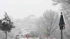 Zamora nieve sanabria 6
