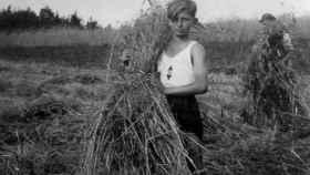 Un niño en el campo en la Alemania nazi.
