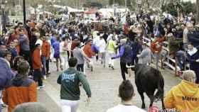 encierro lunes carnaval ciudad rodrigo (17)