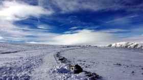 Zamora sanabria nieve laguna peces 4