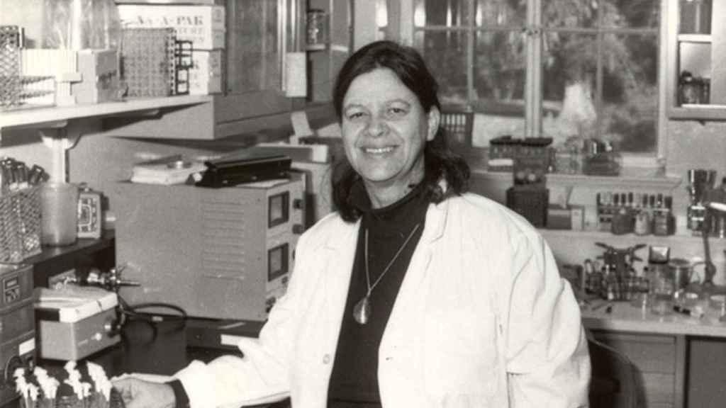 Esther Lederberg en su laboratorio de la Universidad de Stanford.