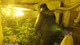 marihuana navacarros 2