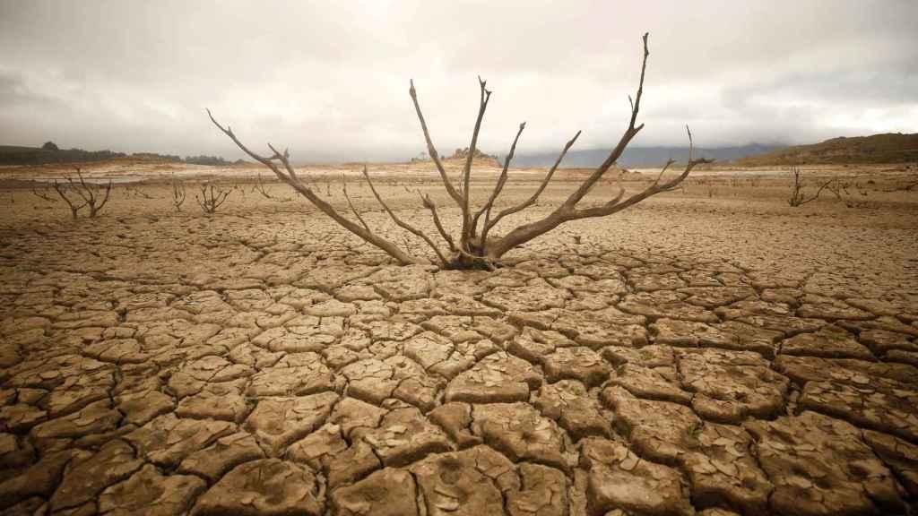 El lecho de Theewaterskloof dam, el principal embalse de Ciudad del Cabo. REUTERS/Mike Hutchings.