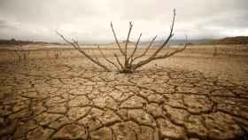 Las cicatrices de la sequía.