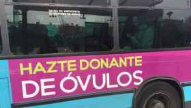 Los autobuses que pasan por el barrio universitario de Málaga también llevan la publicidad.