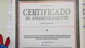 burro apadrinado villamayor
