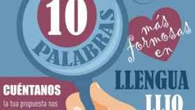 cartel-buscamos-10-palabras_llengua-llionesa_asociacion_faceira