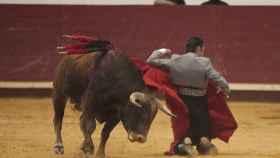 Valladolid-Arroyo-toros-benefico-005