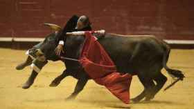 Valladolid-Arroyo-toros-benefico-009