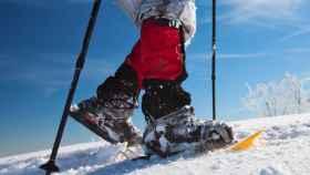 Ruta con raquetas de nieve-3