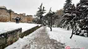 Zamora nieve 30