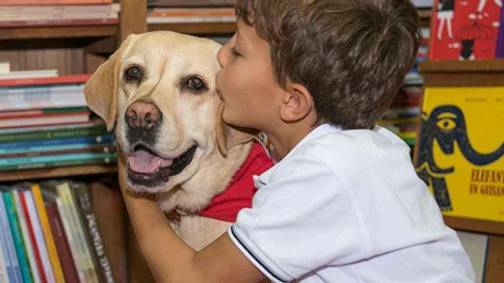 Los perros crean un vínculo afectivo muy fuerte con los pequeños.