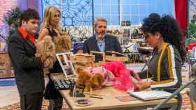 'Maestros de la costura' baja a un preocupante 11,5% frente a 'La Voz Kids'
