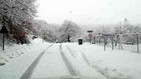 zamora-nieve-cerdillo