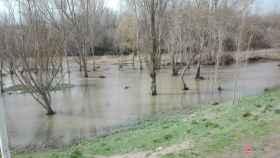 crecida rio tormes salamanca 4