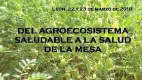 IV Jornadas de Agricultura Ecologica