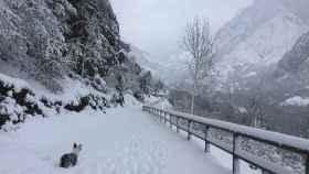 La nevada en Pola de Somiedo, Asturias por Marité Lana Díaz.