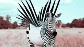 Usa Photoshop para convertir la realidad en Narnia, o en un viaje de LSD