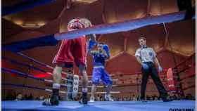 Valladolid-martin-molina-boxeo-deportes