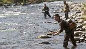 P pesca trucha