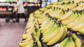 Decenas de plátanos dispuestos en bandejas en un supermercado.