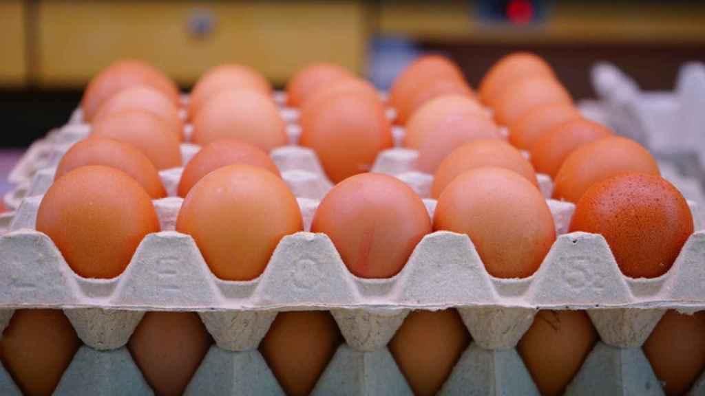 En todo el mundo se producen 68 millones de toneladas de huevos.