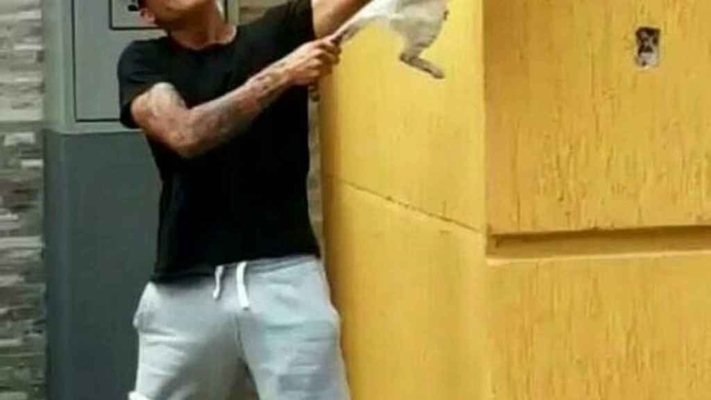 Uno de los futbolistas maltratando a un gato.