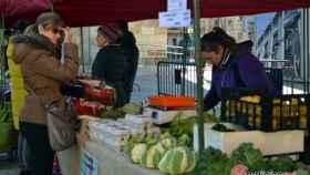 zamora mercado ecologico (5)
