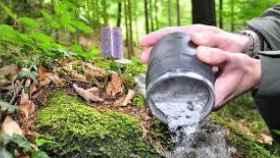 La guerra por las cenizas del señor Clemente: las quería en un árbol y acabaron en latas de conserva