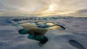 El Ártico se ha visto seriamente dañado en los últimos tiempos debido al calentamiento global.