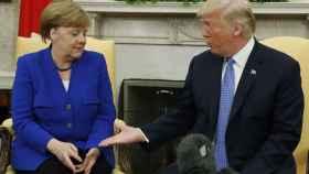 Trump tiende la mano a Merkel durante su reunión en el Despacho Oval