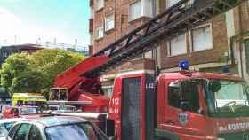 Leon-bomberos-rescate-persona-desorientada