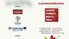 zamora diputacion jornada frutos