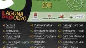 Valladolid-san-pedro-regalado-laguna