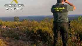 Zamora guardia civil robo