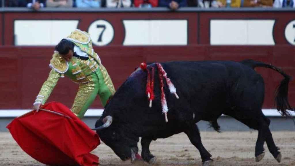 Derechazo desparramado de David Mora al buen sobrero de José Cruz