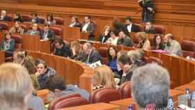Regional-pleno-cortes-sesion-029