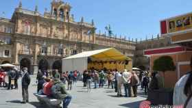Feria del libro Salamanca (19)